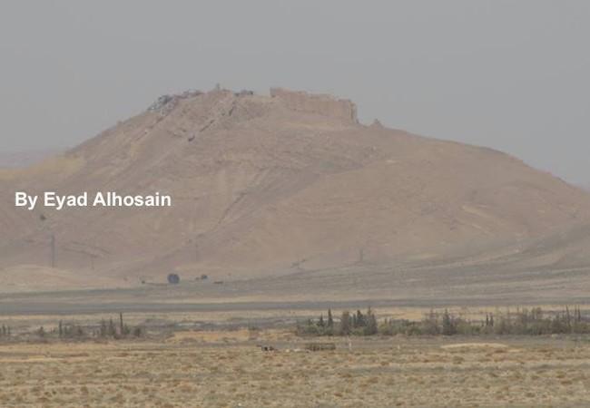 Lực lượng Tigers đánh chiếm đỉnh núi Musharraf, Palmyra