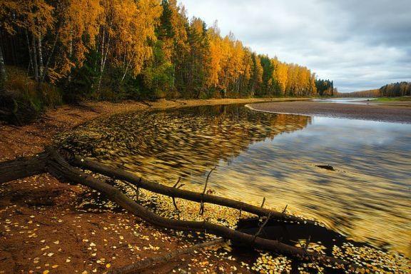 Mùa thu vàng ở Nga