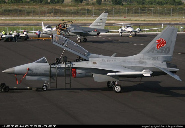 Việt Nam xem xét mua máy bay chiến đấu, trinh sát Mỹ , châu Âu - ảnh 3