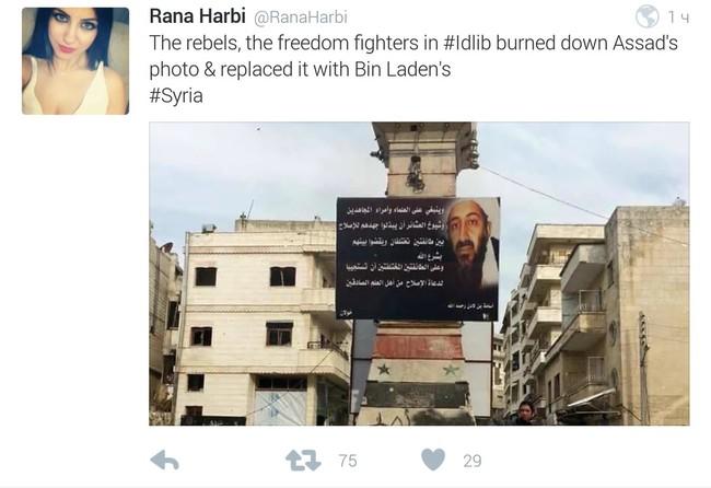 Syria dồn ép khủng bố, Nga tăng hỏa lực, nóng bỏng cuộc đấu chính trị - ảnh 1