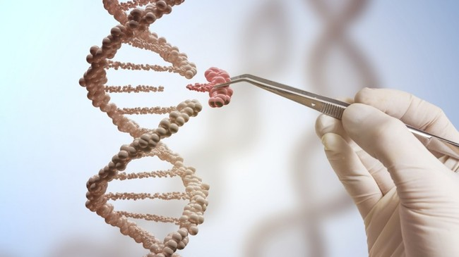 Chỉnh sửa gen đang thúc đẩy các giới hạn khoa học - ảnh 1