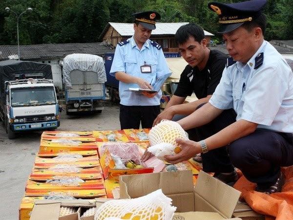 20 tỷ USD từ TQ vào Việt Nam: Đi đâu không biết? - ảnh 1